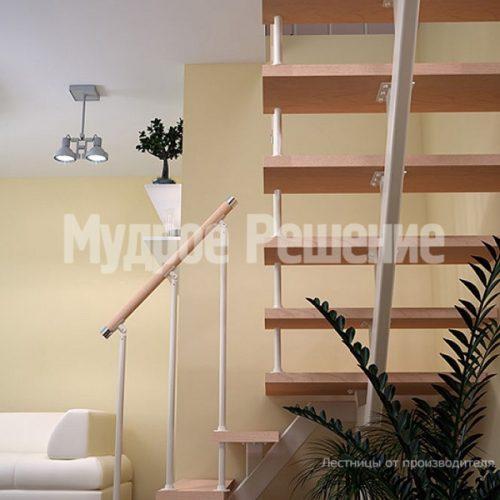 Металлическая лестница-52