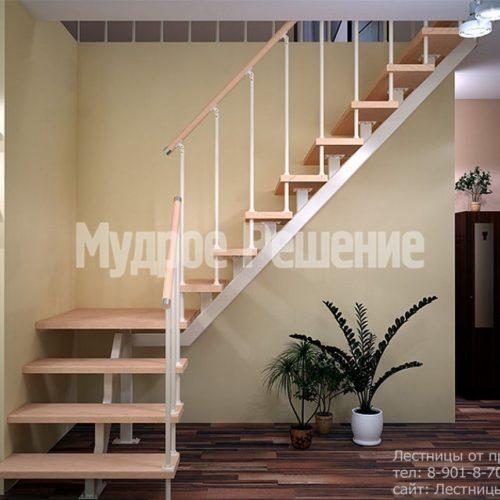 Лестница на монокосуаре на второй этаж